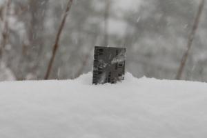 "16.5"" (41.9 cm) snow"